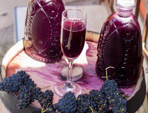 Conoce el xoxogo, el vino de Los Tuxtlas Veracruz